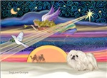 CHRISTMAS STAR<br>& White Pekingnese #4