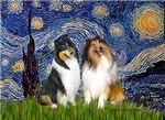 STARRY NIGHT<br>& 2 Collies