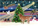 CHRISTMAS MAGIC<br>& NS Duck Tolling Retriever