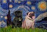 STARRY NIGHT <br> & 2 Pugs
