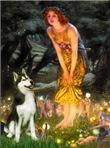 MIDSUMMER'S EVE<br>& Siberian Husky(BW)