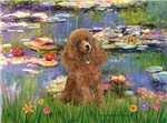 WATER LILIES<br>& Apricot Poodle (Toy/Min)