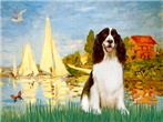 SAILBOATS #2 <br>& English Springer (Liver)