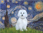 Starry Night<br>With Maltese (B)