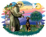 St. Francis #2 &<br> Doberman Pinscher (natural)