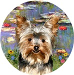 Yorkshire Terrier (#17)<br>in Lilies (#2)
