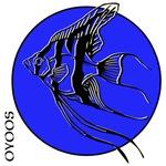 OYOOS Blue Fish design