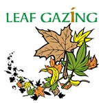OYOOS Leaf Gazing design