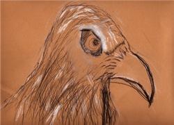 Dana Eagle