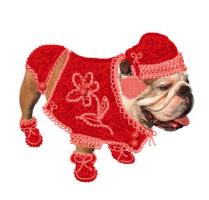 Cozy Bulldog