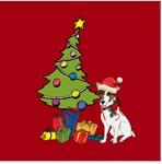 Santa Jack Russell Terrier