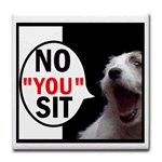 Jack Russell, No YOU Sit