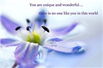 You Are Unique And Wonderful Affirmations Products