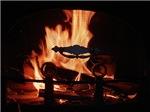 COZY FIRE™