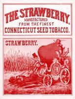 Strawberry no.2
