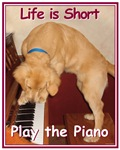 Play the Piano Shop