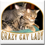 Crazy Cat Lady 1
