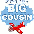 Big Cousin to be - Airplane