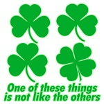 Shamrocks or Clovers