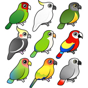 Nine Birdorable Parrots