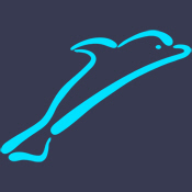 Stylized Dolphin