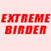 Extreme Birder