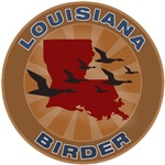 Louisiana Birder