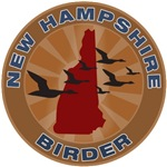 New Hampshire Birder