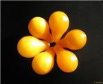 Yellow Plum Tomatoes