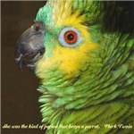 Blue-fronted Amazon