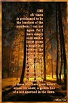 Mini Posters 11x17