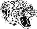 Pan the Jaguar