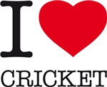I LOVE CRICKET