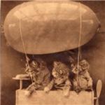 Kittens in Flight