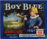 Boy Blue Apples