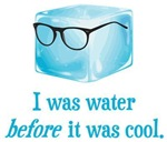 Hipster Ice Cube Was Water Before It Was Cool