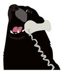 Hello Dog Telephone Phone