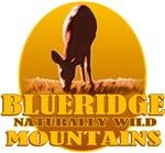 Blue Ridge Mountains NW