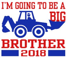 Big Brother 2018 Truck t-shirts