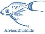 <b>African Cichlids</b>