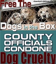 Free the VA Dogs in the Box