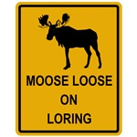 Moose Loose On Loring