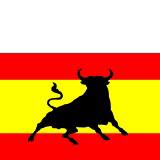 Spanish Bull Flag