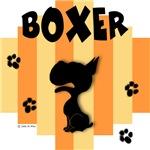 Boxer Yellow/Orange Stripe