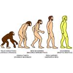 Admin T-Shirt - Evolution