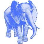 Big Blue Elephant Illustration