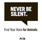 Never Be Silent