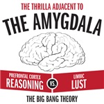 The thrilla adjacent to the amygdala