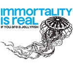 Immortality is real