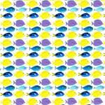 unicornfish tang surgeonfish pattern